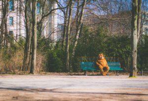 gamifying-life-beating-shyness